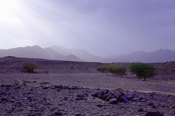 ethiopia_g12358.jpg (Photo: Tom Pfeiffer)