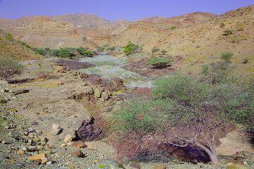 ethiopia_g12391.jpg (Photo: Tom Pfeiffer)