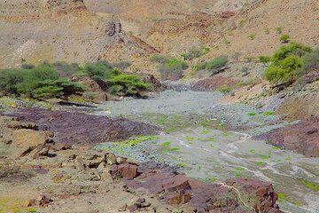 ethiopia_g12392.jpg (Photo: Tom Pfeiffer)