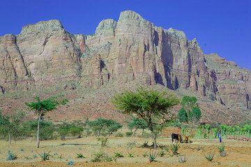 ethiopia_g12448.jpg (Photo: Tom Pfeiffer)