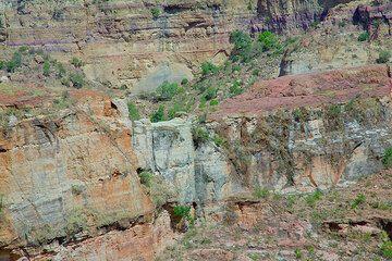 ethiopia_g12470.jpg (Photo: Tom Pfeiffer)