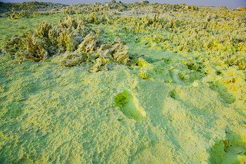 Powdery pure sulphur covers the ground in this area (Photo: Tom Pfeiffer)