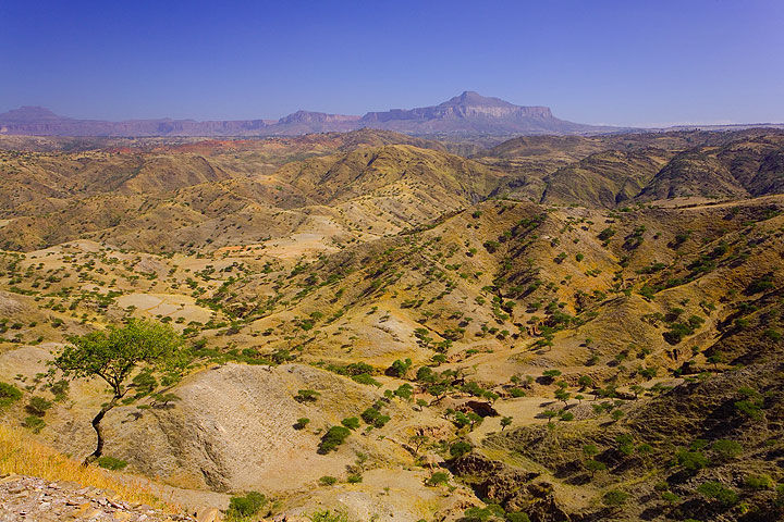Typical deforested hilly landscape of the Ethiopian Highlands (Photo: Tom Pfeiffer)