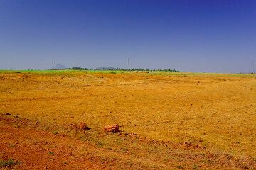 Red soil and intense colors (Photo: Tom Pfeiffer)