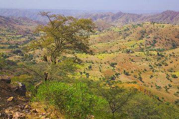 Landscape of the Tigray region (Photo: Tom Pfeiffer)