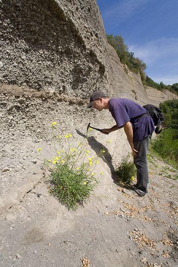 Tom Pfeiffer sucht nach den Hauyn-Kristallen an der Wingertsbergwand. (Photo: Tobias Schorr)