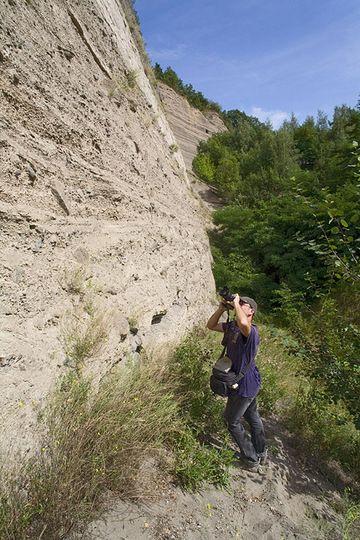 Tom Pfeiffer fotografiert die Schichten des berühmten geologischen Aufschluss Wingertsbergwand. (Photo: Tobias Schorr)