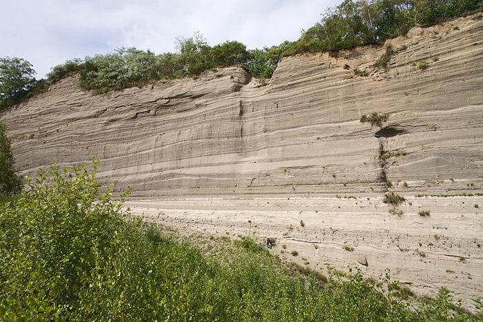 Die berühmte Wingertsbergwand mit Bims-Schichten des Laacher See Vulkanausbruchs von 9900 v.Chr. (Photo: Tobias Schorr)