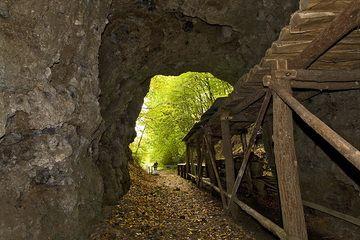 Tunnel zum Steinbruch im ehm. Arnsberg-Vulkan (Photo: Tobias Schorr)