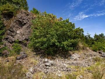 The famous agate quarry Hellerberg near Freisen. (Photo: Tobias Schorr)
