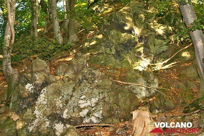 Trachitischer Lavastrom im Siebengebirge (Photo: Tobias Schorr)