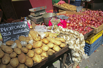 Potatoes, garlic and onions (c)