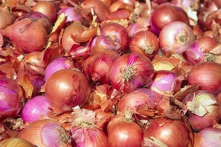 Onions (Photo: Tom Pfeiffer)