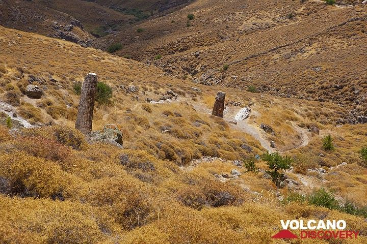 Petrified forest on Lesbos island, Greece (Photo: Tom Pfeiffer)