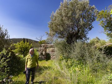 Paul in front of the ancient tower at Throni plain on Methana. (Photo: Tobias Schorr)