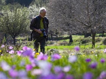 Paul in the anemones meadow at the Makrylongos valley on Methana. (Photo: Tobias Schorr)