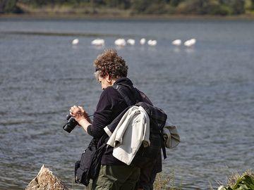 Katharina taking photos of the flamingos at the Psifta lake near Methana peninsula. (Photo: Tobias Schorr)