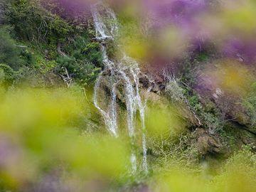 "Waterfall at the gorge ""Diavologefiro"" near the ancient town of Troezen. (Photo: Tobias Schorr)"