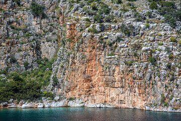Limestone cliffs (Photo: Tom Pfeiffer)