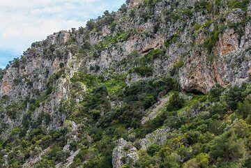 Caves in the limestone cliffs near Epidauros (Photo: Tom Pfeiffer)