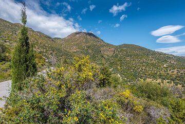 Way to Kypseli (Photo: Tom Pfeiffer)