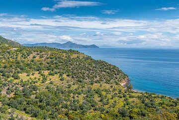 View towards Aegina (Photo: Tom Pfeiffer)
