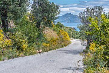 Street to Agios Georgios (Photo: Tom Pfeiffer)
