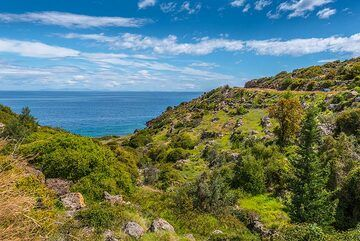 Landscape of Methana (Photo: Tom Pfeiffer)