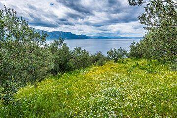 Looking towards the Saronic Gulf (Photo: Tom Pfeiffer)