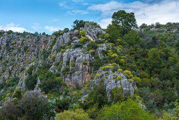 Karst-valley of Nea Epidauros. (Photo: Tom Pfeiffer)