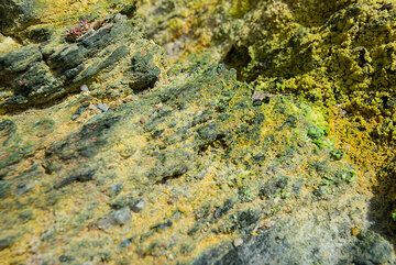 Green and yellow salts formed by hydrothermal activity at Paleochori beach (Photo: Tom Pfeiffer)