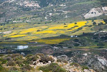Milos Island, Greece: photos April 2014 - colors and springtime (Photo: Tom Pfeiffer)