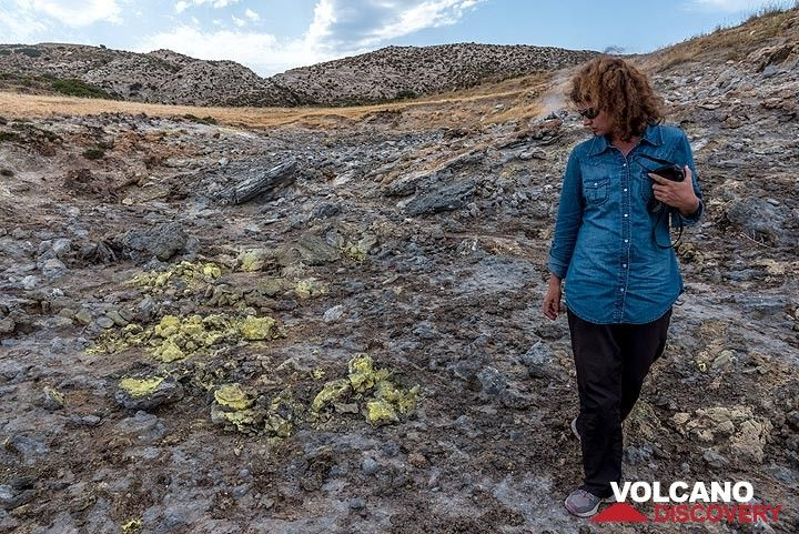 Sulphur covers part of the area, where volcanic gasses escape from the ground and killed all vegetation. (Photo: Tom Pfeiffer)