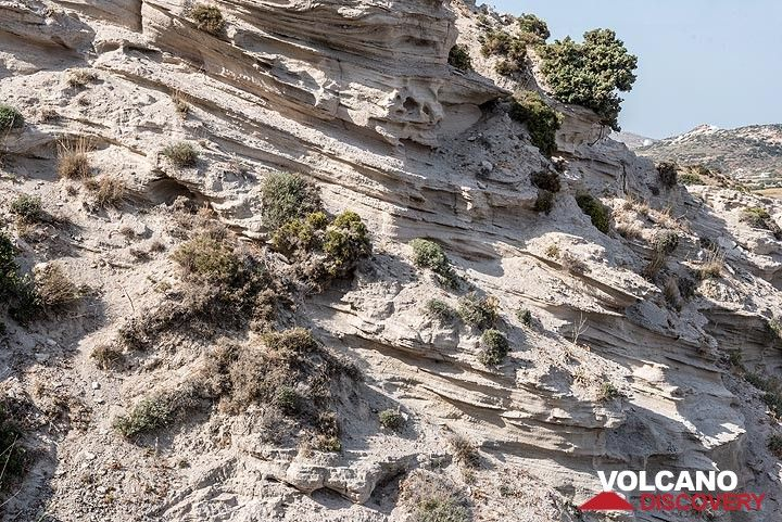 This area is covered with pumice air-fall and surge deposits from the youngest sub-aerial volcanic activity at Milos, which occurred near Tsigrado about 84.000 years ago. (Photo: Tom Pfeiffer)