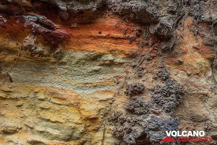Colorful ore and fossil bearing sandstone (Photo: Tom Pfeiffer)