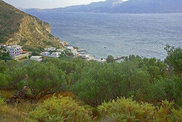 Olive trees above the fishing village Klima (Photo: Tom Pfeiffer)