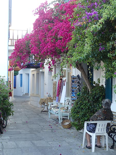 Bougainvillea and an old lady sitting outside in front of her tourist shop (Photo: Ingrid Smet)