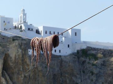 Octopus drying on a line with the monastery of Panagia Spiliani in the background (Photo: Ingrid Smet)