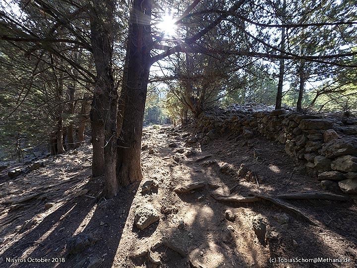 The path to the Dikteos mountain. (Photo: Tobias Schorr)