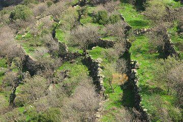 Terrasses (c)