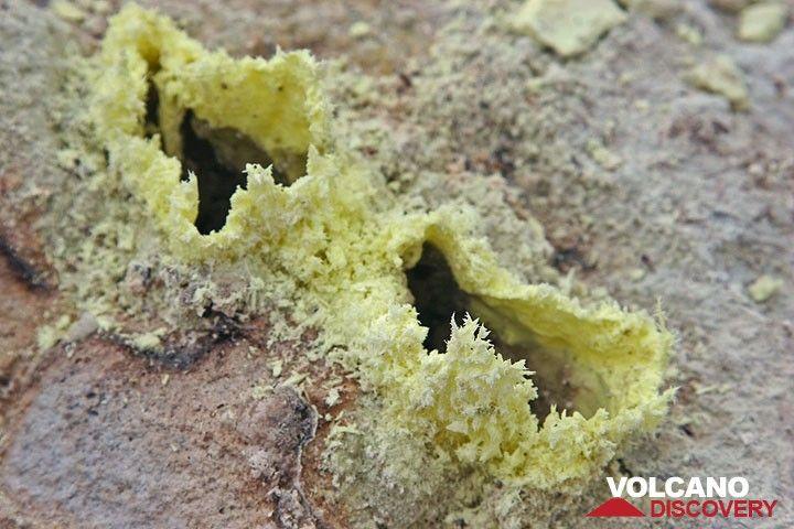 Sulphur crystals forming thin shells. (c)