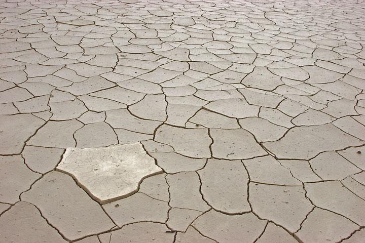 Mud cracks (c)