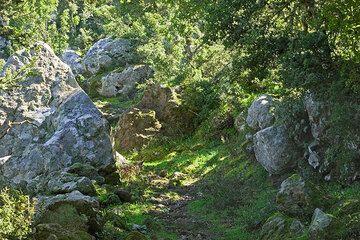 Trail (c)