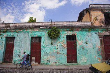 Maison verte (Photo: Tom Pfeiffer)
