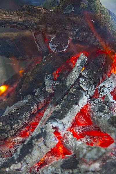 Fire (Photo: Tom Pfeiffer)