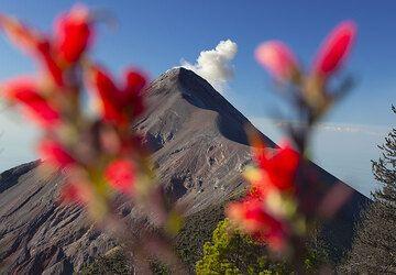 Guatemala Dez 2009: Farben (Photo: Tom Pfeiffer)