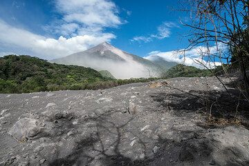 Short visit of the San Antonio canyon, filled by pyroclastic flow deposits only a few weeks old. We have to keep a close watch on the volcano, which seems calmer this morning. (Photo: Tom Pfeiffer)
