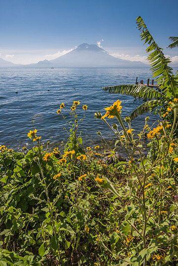 San Pedro volcano seen from the lake shore. (Photo: Tom Pfeiffer)