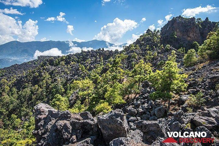 Parts of the still fresh looking 1818 block lava flow. (Photo: Tom Pfeiffer)