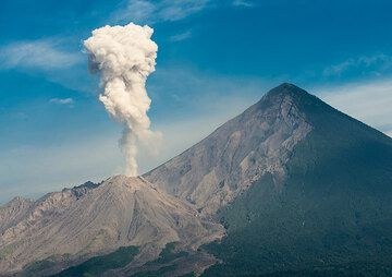 Eruption of Santiaguito seen from a coffee plantation where we have a day's rest. (Photo: Tom Pfeiffer)